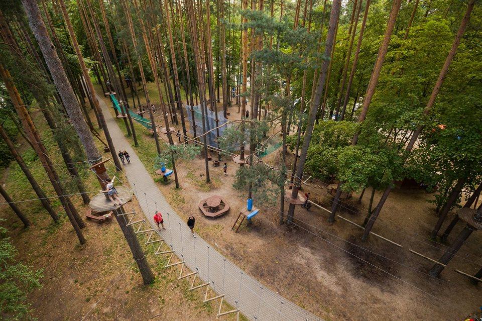 Вид с высоты на парк