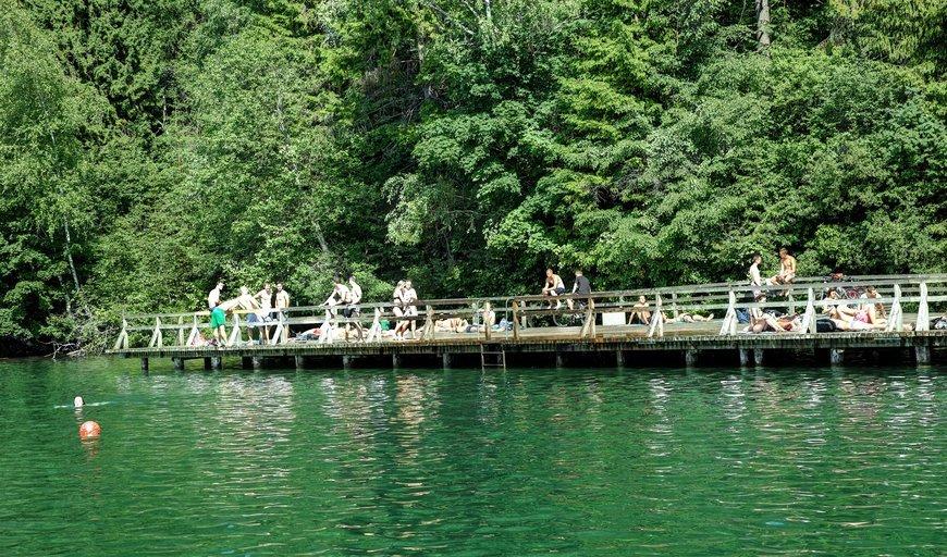 Озеро, парк Вяркяй