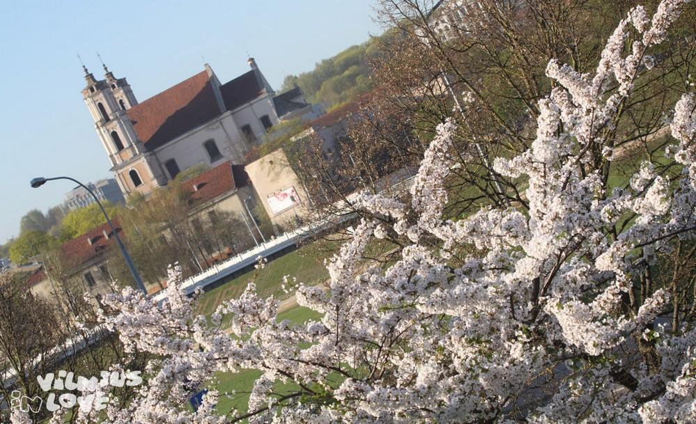 Вильнюс, весна