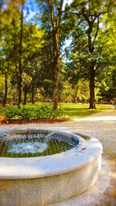 Бернардинский сад, Вильнюс: адрес, фото
